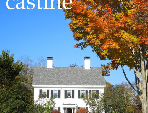 Castine Fall Foliage