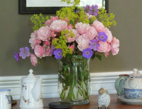 Highlights of the Castine House and Garden Tour!