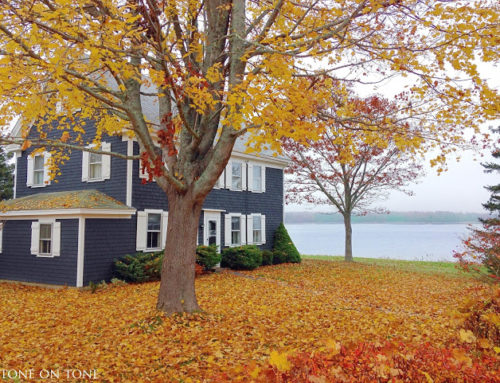 Our Maine Home in Country Living