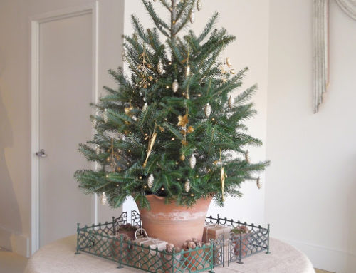 Christmas 2017: Antiques and the Garden